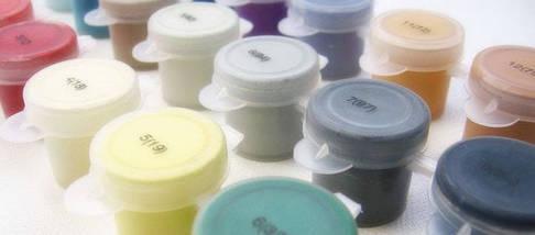 Набор-раскраска по номерам Натюрморт с цветами худ. ван Брюссель Паулюс Теодор, фото 2