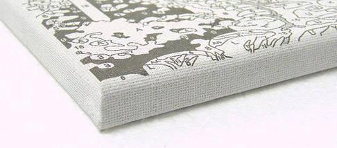 Набор-раскраска по номерам Черные лебеди худ. Орпинас Андрес, фото 3