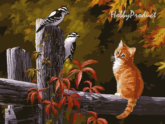 Набор-раскраска по номерам Котенок и птички на заборе худ. Клейтон Персис, фото 2
