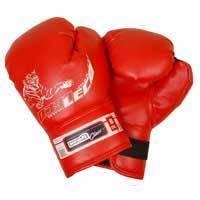 Перчатки боксерские 6 унц. для 7-10 лет ПРОФИ т007-01
