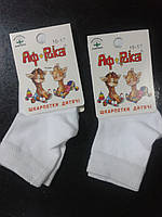 """Демисезонные белые  детские носки """"Африка"""""""