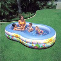 Семейный надувной бассейн Intex, 56490 Paradise Pool (262*160*46 см)