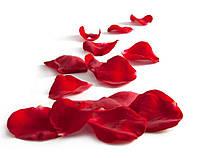 Искусственные лепестки роз 100шт  цветы роза красные