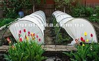 Парничок Универсальный 6м, фото 1