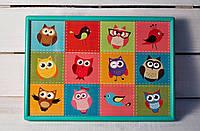 Поднос на подушке Веселые совы 380-9714211