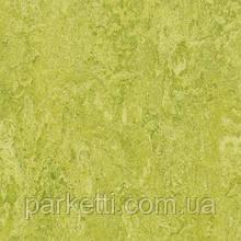 Натуральный линолеум Forbo Marmoleum Real 2,5 мм, все декоры