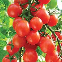 Семена томатов Карамель красная