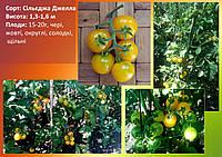 Семена томатов Сильеджа Джелла
