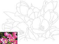 Холст с контуром Этюд Натюрморт №16 Розовые тюльпаны 30х40 Rosa Start 654