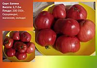 Семена томатов Батяня