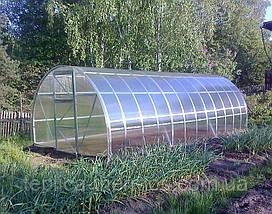 Теплица универсальная «Удачная-2 3*6» под сотовый поликарбонат 6 мм, фото 3