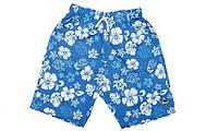 Шорты пляжные (плавки) для мальчика, цвет: голубой/синий