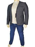 Мужской стильный пиджак Daniel Perry Marbella C-A.3
