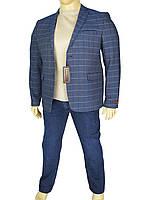 Мужской пиджак Daniel Perry Dicle C.Lacivert в клетку большого размера