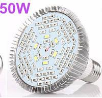 Фитолампа (лампочка светодиодная) – 50 Вт (полный спектр)