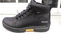 Зимняя кожаная обувь Ecco boing