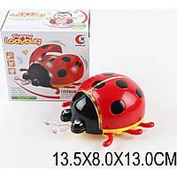 Музыкальная игрушка божья коровка 061A батар