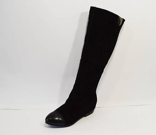 Черные женские сапоги замша Veritas, фото 2