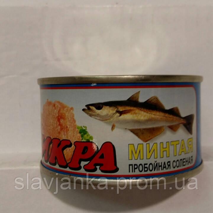 стерлядь фото рыба цена