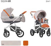 Универсальная коляска Bebetto Silvia 2в1