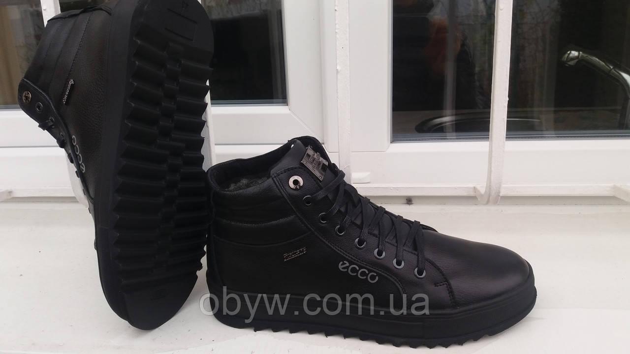 Кожаные обувь Ecco сhov - ОБУВЬ КУРТКИ В НАЛИЧИИ И ЦЕНЫ АКТУАЛЬНЫ в Днепре a9101dfedd9