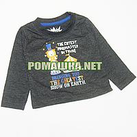 Детский реглан (джепмер, футболка с длинным рукавом) р.68 для мальчика 3941 Серый