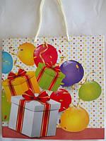 Пакет подарунковий 23Х24Х10
