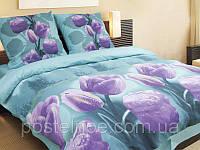 Комплект постельного белья 944 «Волшебный тюльпан» ТМ ТЕП (Украина) бязь полуторный
