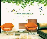 Интерьерная наклейка на стену  Дерево зеленое большое (AY233)