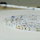 Светодиодная лента BIOM Professional 2835-60 W белый, негерметичная, 5метров, фото 3