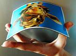 Фото на магнитах - оригинальные Подарки, Призы, Сувениры, фото 10