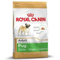Роял Канин Мопс Эдалт Royal Canin Pug adult сухой корм для взрослых собак 500 г