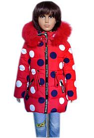 Зимняя куртка парка Горохи