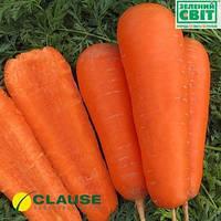 Семена моркови Болтекс (Clause) 0,5 кг - среднепоздняя сортовая (110-120 дней), тип Шантане