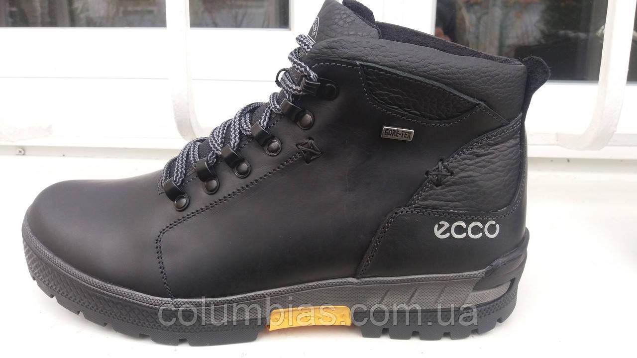 8971ee392 Зимние кожаные ботинки Ecco : продажа, цена в Днепропетровской ...