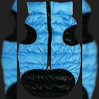 Одежда для мопса, бульдога, пекинеса Hallo S1