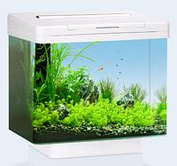 Аквариум Juwel (Джувел) Vio 40 LED, белый 30 литров LED освещение
