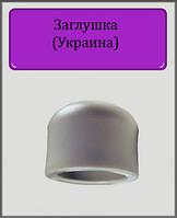 Заглушка ППР 40 (Украина)