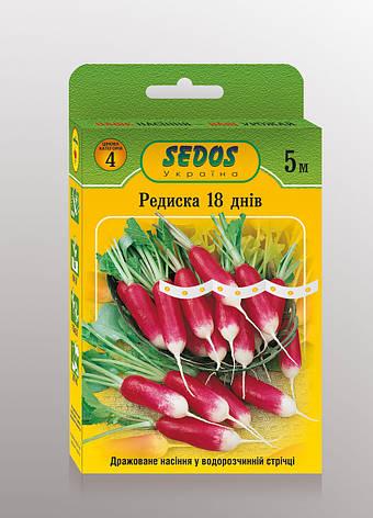 Семена на ленте редис 18 дней, фото 2