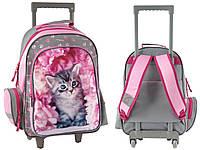 Рюкзак школьный на колесах с котом PASO RAM-1220