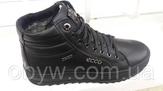 47643f02a0fc Мужская зимняя обувь ecco  продажа, цена в Днепре. ботинки мужские ...
