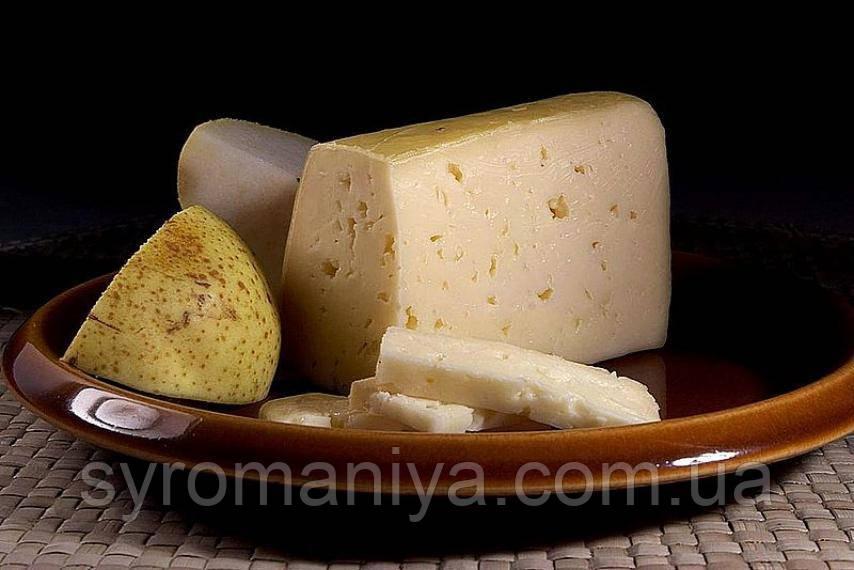 Закваска + фермент для сыра Тильзит