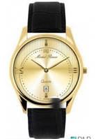 Оригинальные Мужские Часы MICHELLE RENEE 270G331S