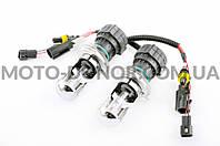 Лампы биксеноновые (пара)   H4 (12V 50W DC AMP)   4300K
