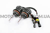 Лампы биксеноновые (пара)   HB1 (12V 50W DC AMP)   6000K