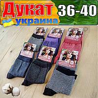 """Носки женские  демисезонные хлопок ТМ """"Дукат""""  Украина НЖД-02799"""