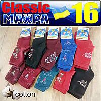 Носки детские махровые для девочки  Classic Украина Гребенюк  размер 16 - случайное ассорти  НДЗ-07216