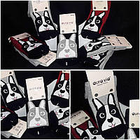Носочки для женщин с символом года,  разные расцветки, 35-38, 38-41 р-ры, 45/35 (цена за 1 шт. + 10 гр.)