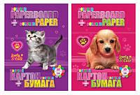 """Набор """"Animals"""": картон цветной B5 двухсторонний (10 листов) + цветная бумага двухсторонняя (16 листов)"""