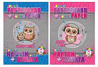 """Набор """"Cute owl"""": картон цветной B5 двухсторонний (10 листов) + цветная бумага двухсторонняя (16 листов)"""